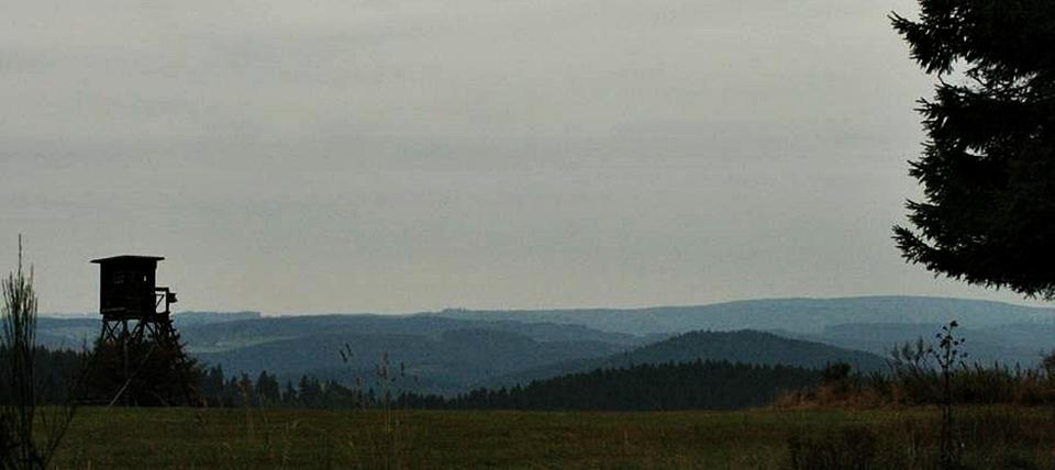 Banner für Finkental und Magergrünland bei Didoll