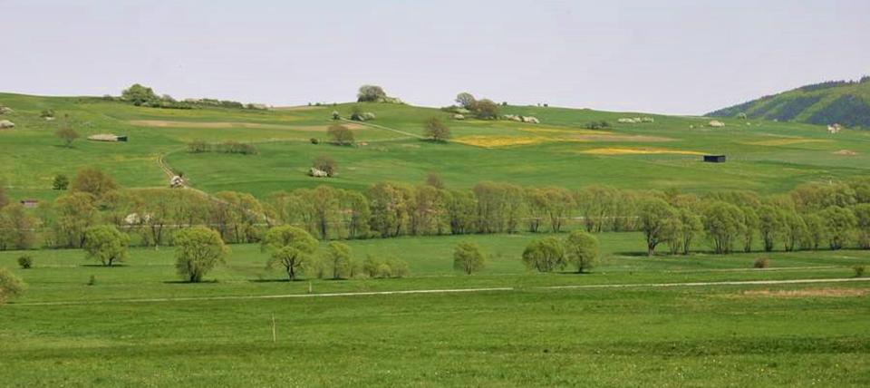 Banner für Nuhnewiesen, Wache und Dreisbachtal