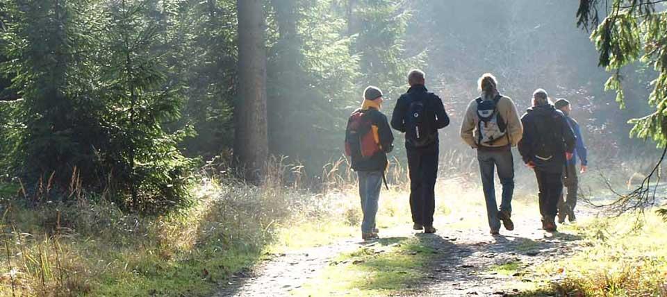 Wanderer im Teutoburger Wald © Dirk Tornede